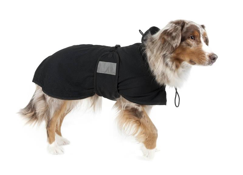 Therapeutic Dog Rug Mesh Medium